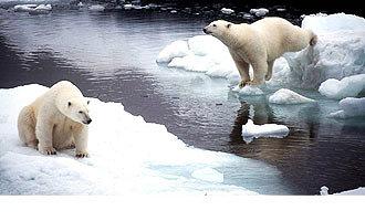 Foto de En el Polo Norteno hubo hielo